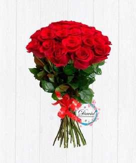 Vendo rosas a buen precio de distintos tipos mencionados en descripción