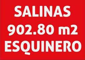 SALINAS TERRENO EN VENTA ESQUINERO