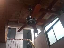 Ventiladores de techo dos