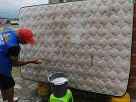 Lava muebles colchones Tapetes