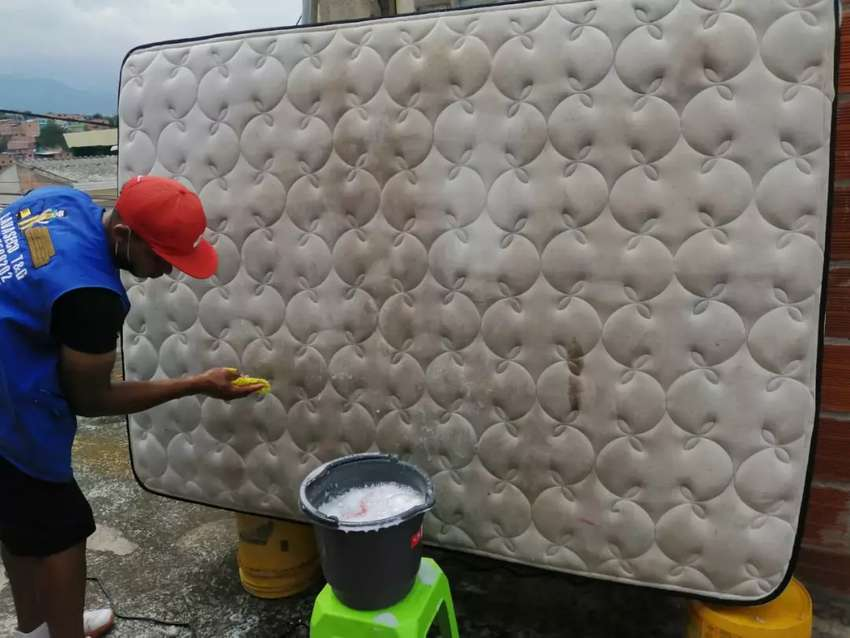 Lava muebles colchones Tapetes 0