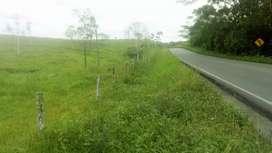 Finca 140 hectareas en Lago Agrio