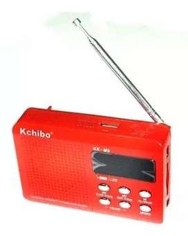 Radio Reproductor Mp3 Pendrive Usb Sd / Mini Sd Recargable $