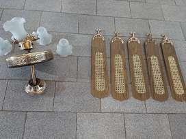 Ventiladores de techo, palas de Madera con plafones de vidrio