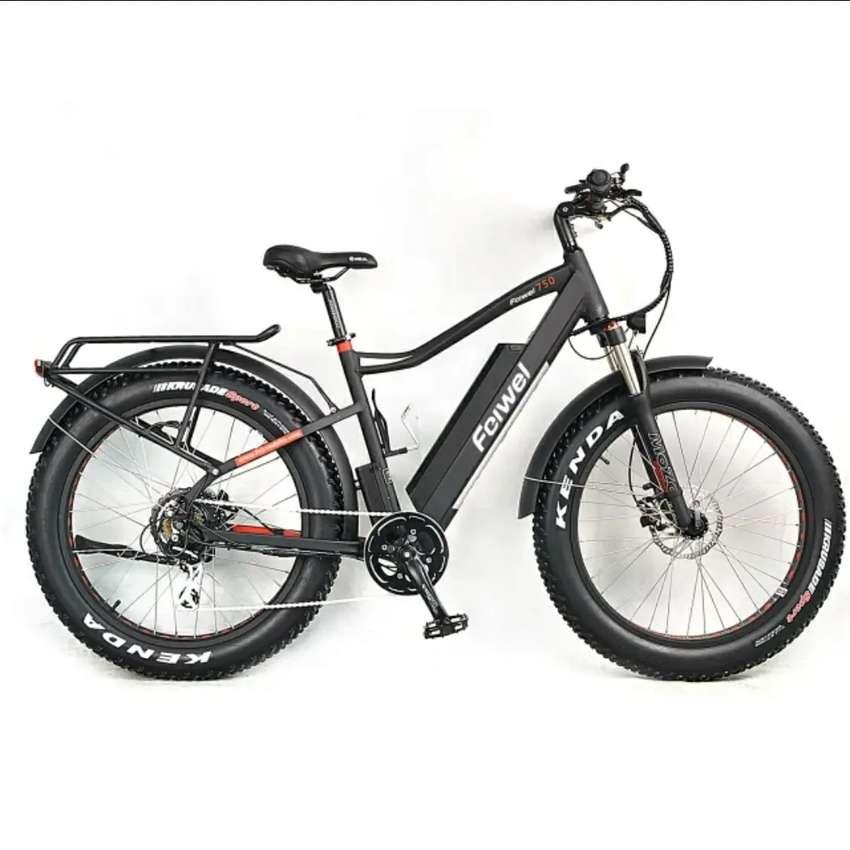 Bicicleta eléctrica Feiwel C26 ScooterPro 0