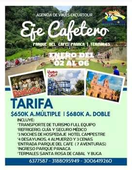 Tour Eje Cafetero En enero salida de  bucaramanga
