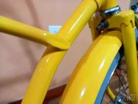 Bicicleta a gogo