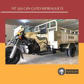 Motocarro doble llanta platon