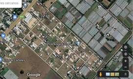 """Terreno en loteo """"6 de agosto"""" en Etcheverry, La Plata 15 x 50 m"""