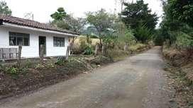 Finca sotara popayan cauca