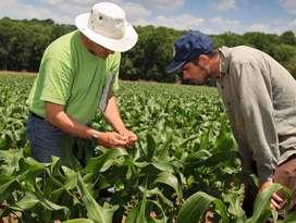 Accesoria agronomica