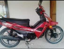 Moto  Caballito shineray