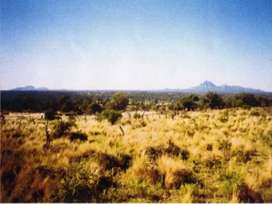 Vendo campo villa de María en los límites de Santiago del estero