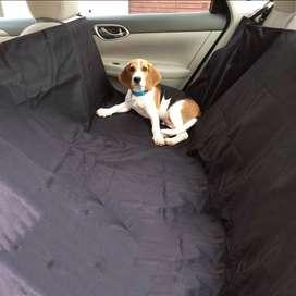 Forro Sillas Carro Perro Funda Protector Mascota Cobertor