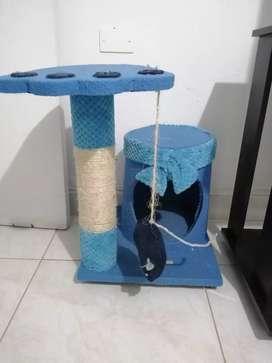 Gimnacio para gato
