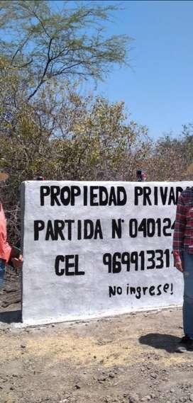 Venta de terreno agricola en Tambogrande - Piura