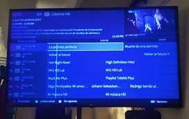 Venta Tv más dvd perfecto estado