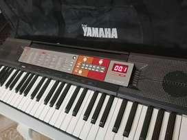 Órgano Teclado Yamaha PSR F50