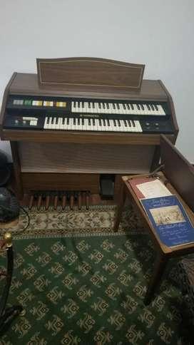 Hermoso Organo