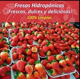 Venta de frutas y verduras