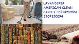 lavado en seco de tapetes alfombras y muebles a domicilio