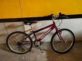 Bicicleta Raul Mesa en excelente estado