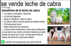 Se vende leche de cabra