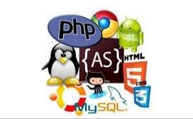 Asesorias en programación y bases de datos.