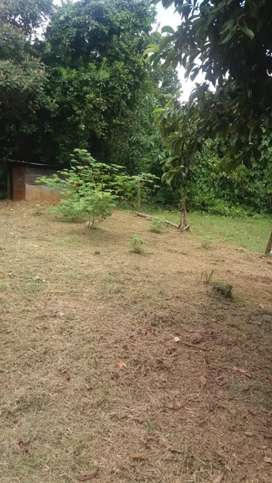 Sale of land in Gualaca place with good privacy and titled near the old slaughterhouse is bnito the land
