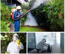 fumigacion contra plagas