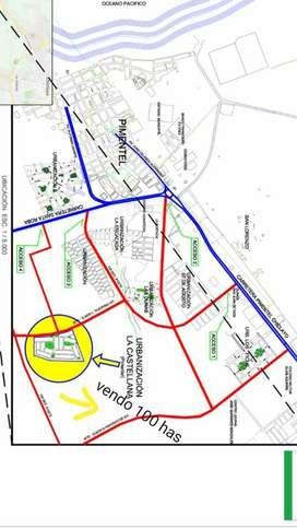 vendo 100 hectareas-pimentel con zonificación y vias 12 dolar el m2