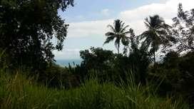 Vendo parcela en puerto guandolo paz del caribe