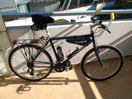 Mountain Bike Diamond Back Racing Topanga (1996)