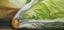 Pinturas de Acrilico y Oleo dos Cuadro hechos 100% a mano representando la naturaleza viva, bodegones