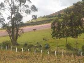 Vendo Oportunidad Terreno para Quinta en Malchingui Complejo Residencial Club Los Robles