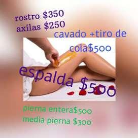 Depilacion femenina a domicilio con cera sistema rollon y español