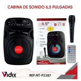 Parlante Cabina De Sonido Profesional Bt + Microfono 6.5'