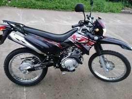 Hermosa Yamaha XTX