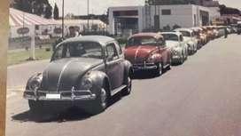 VW escarabajo 1962