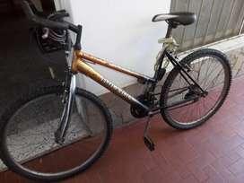 Bicicleta cambios shimamo.