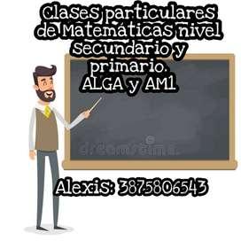 Clases particulares de Matemáticas nivel primario secundario