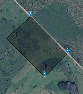 Vendo 20 hectáreas Colonia Benitez, escritura