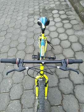 Bicicleta flamante O Km