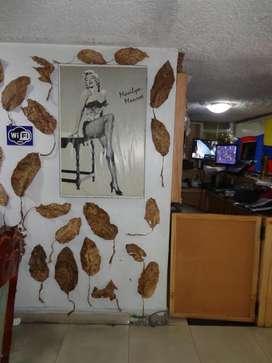 Hostal escocie habitaciones  EN  QUITO