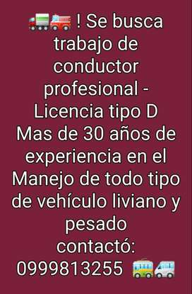 Conductor profesional