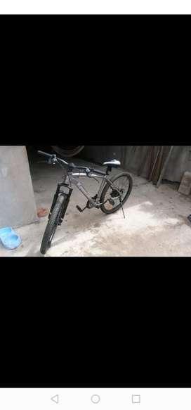 Bicicleta  montañera kawuasaki