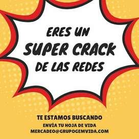 Crack para Redes