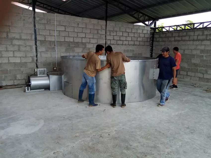 Secadora de cacao y maíz 50 qq en acero inoxidable