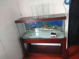 Oferto acuario  completo