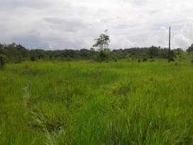 Parcela de 30 hectáreas